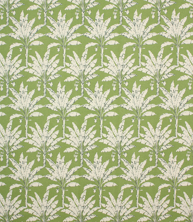 Palm House / Spruce
