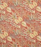 Paloma / Terracotta Fabric