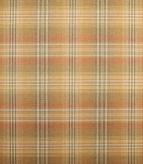 Balmoral / Fired Earth Fabric