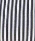 Candy Stripe / Navy Fabric