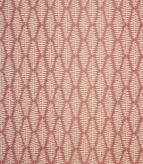 Fernia Fabric / Rosa
